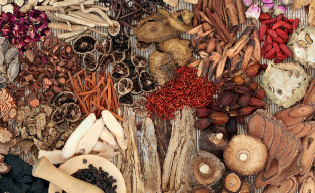 Janet N. Lurie — Chinese Herbs